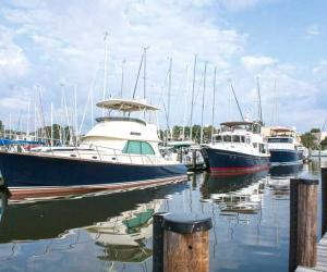 chesapeake bay marina