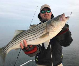 Striped Bass Conservation Regulations